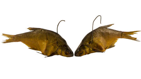 pair of freshly smoked bream fishes with hooks in neck isolated on white background  photo