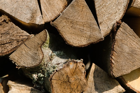 background of stacked chopped firewood stump parts photo