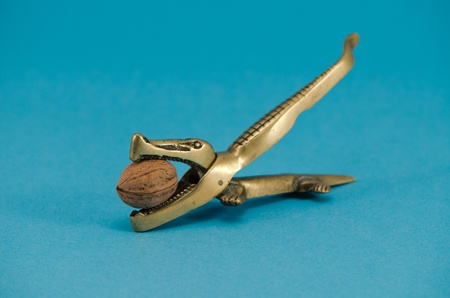 golden color steel crocodile form nut shell crush tool with walnut greek nut in mouth on blue background.