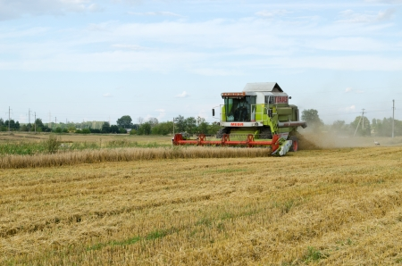 BIRZAI, LITHUANIA - CIRCA AUGUST - combine machine equipment pass harvest wheat crop in agricultural field and stork look for food on circa August, 2012 in Birzai, Lithuania.
