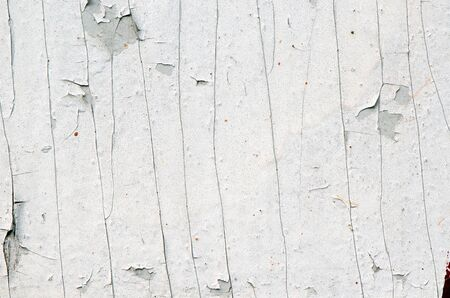 background of grunge old white peeled paint remain on plywood wall.  photo