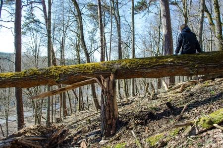 arboles secos: mujer sentada en el viejo tronco de �rbol roto cubierto de musgo en la colina y el peque�o camino cuesta abajo.