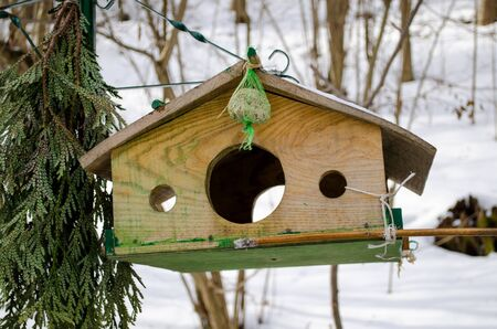 nailed wooden bird feeder with three holes fly  photo