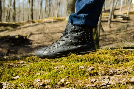 closeup of human leg with shoe and jeans stand walk on mossy tree trunk in forest park.  Stock Photo - 21744036