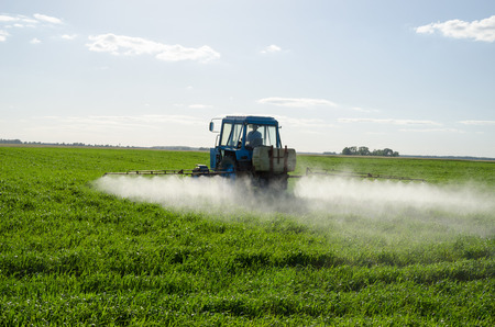 Tractor spray fertilize green field with pesticide insecticide herbicide chemicals in agriculture field in evening sunlight. Farmer care plants.  Stock Photo