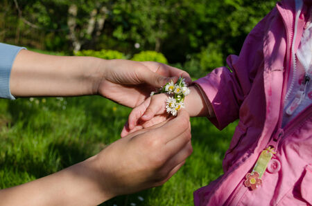 mothers hand adorned baby hands with white small daisy flowers   photo