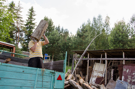 woodshed: worker man unload tree log firewood wood from tractor trailer near rural woodshed house.