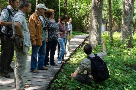 DUKSTOS, LITHUANIA - JUNE 18: group of elderly tourists in forest listen to park leader guide story about plants on June 18, 2013 in Dukstos, Lithuania.  Editorial