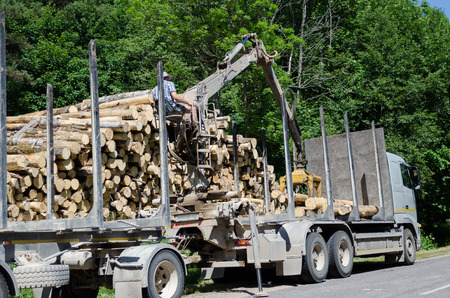 Man with special crane equipment load truck trailer with wood logs near forest. Forest fell.  Stock Photo