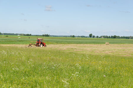 ted: Red tractor ted hay drying grass in agriculture field. Preparing feed for animals.