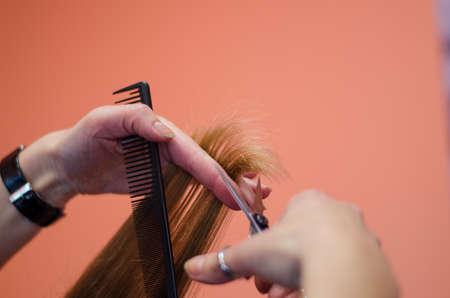 shorten: peluquer�a acortar las puntas del cabello con tijeras