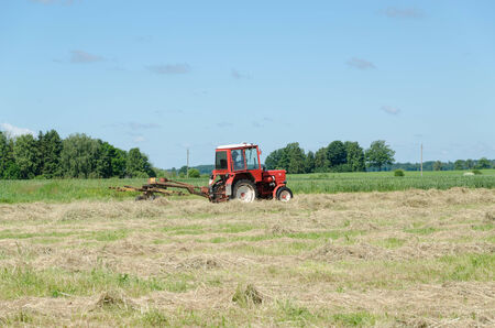 ted: tractor heavy machine equipment ted hay dry grass in agriculture field. Preparing fodder feed for animals.  Stock Photo