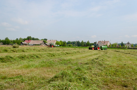 Heavy agricultural machines tractors preparing hay for animal food fodder in field.  Stock Photo