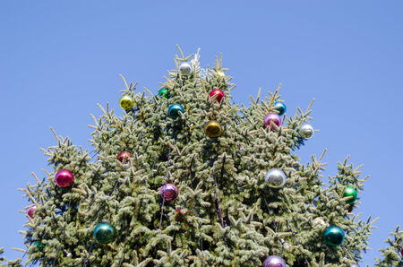 big wide christmas tree with glassy colorful ball on blue sky background