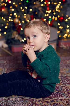 baby boy sitting near Christmas tree and eating cookies, gingerbread