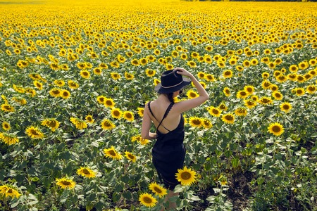 young sexy girl in black dress and hat in field with yellow sunflowers 写真素材
