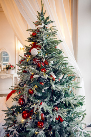snow-covered Christmas tree standing at home with red balls and toys on the branches