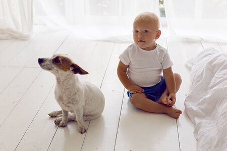 child in a white t-shirt and shorts sit at home by the window with dog