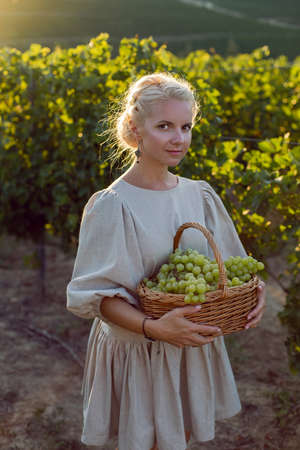 woman with a wicker basket of green grapes stands in her vineyard at sunset