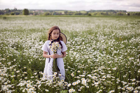 portrait girl child in a white dress stands on a camomile field in a hat and with a bouquet of flowers