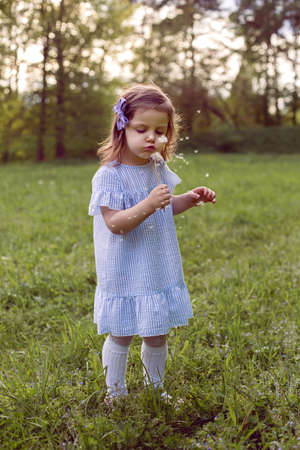 girl in a field with dandelions stands in a blue striped dress with a bow