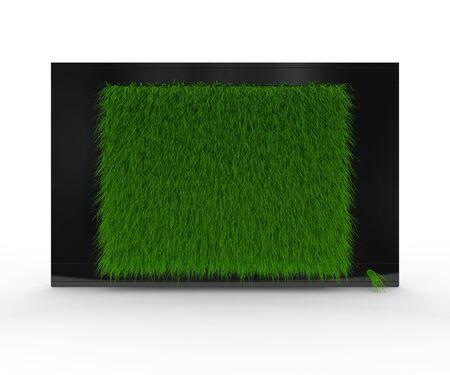 Black shiny TV with grass