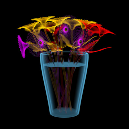 Gerber flowers in a bucket  3D xraymulticoloured transparent isolated on black background