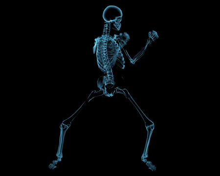 Fighting skeleton (3D xray blue transparent isolated on black background)