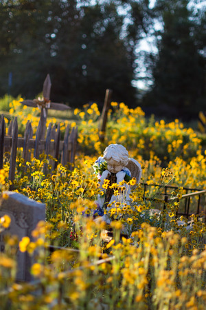 praying angel: A vertical color photo of a stone angel on a cemetery grave surrounded by yellow wild flowers.