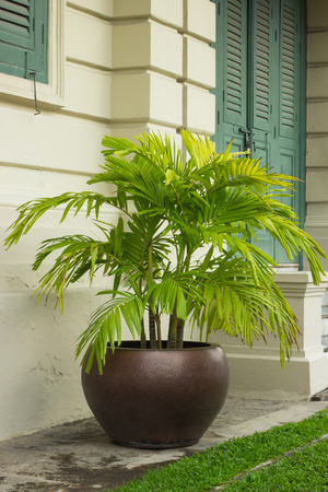 the grand palace: Pot in grand palace Bangkok to decorate wall and way. Stock Photo
