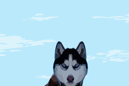 Husky vector illusion