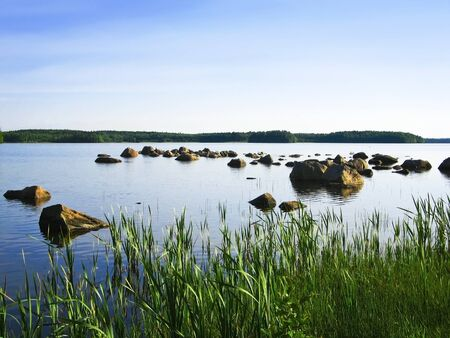 Summer view to  calm lake from grassy shore