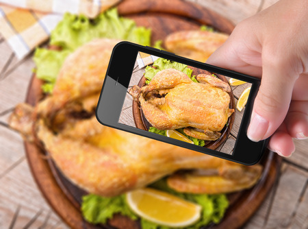 pullet: Hands taking photo chicken with smartphone