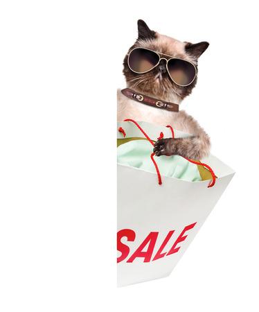 shopper: Cat. Shopper. Sales.