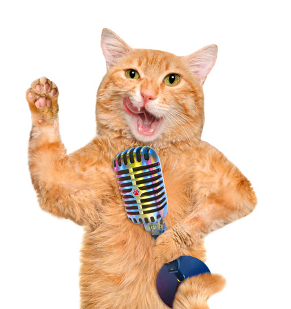 the showman: Cat with a microphone. Isolated on white.
