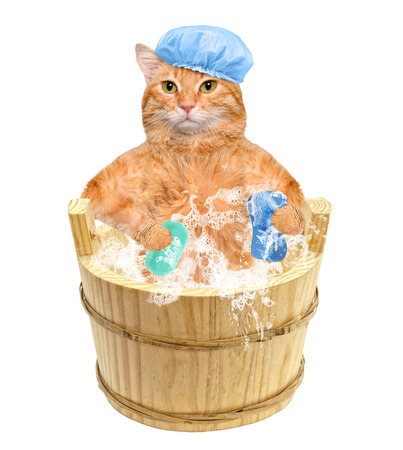 relaxen: Cat washes