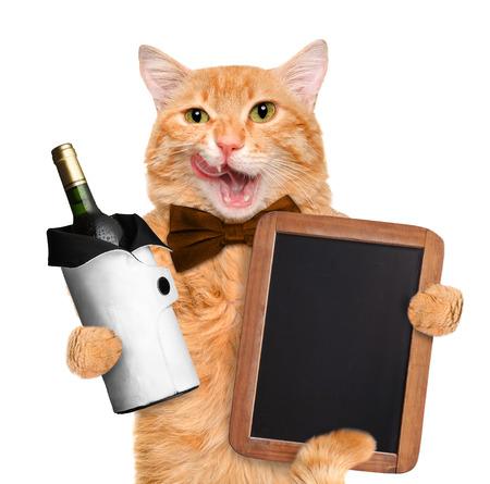 Gato con vino. Aislado en blanco.