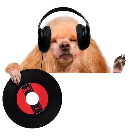 the nineties: music headphone vinyl record dog
