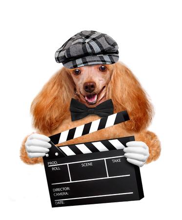movie clapper board director dog