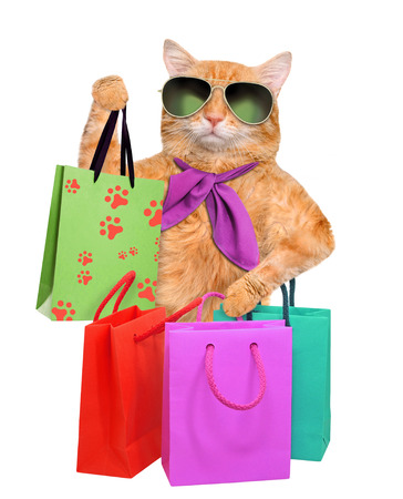 Cat with shopping bags.