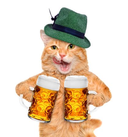 Kat met een pul bier. Geïsoleerd op wit.