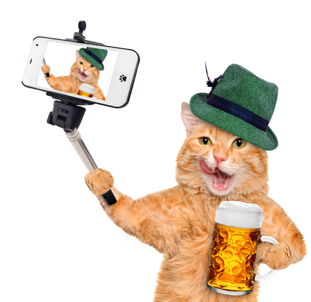 Cat taking a selfie with a smartphone. Cat with a beer mug.
