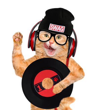 funny cats: music headphone vinyl record cat Stock Photo
