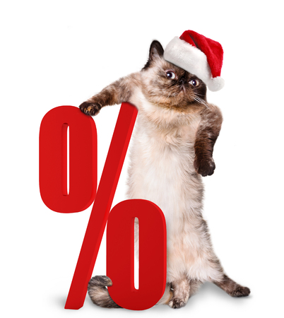 shopper: Cat. Shopper. Sales. Isolated on white.