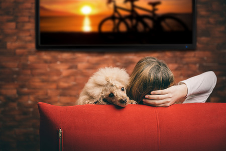 Young woman watching smart TV with dog. Фото со стока
