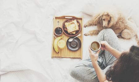 Young woman with her dog in a bed. Breakfast in bed - french toasts with a cup of coffee. Reklamní fotografie