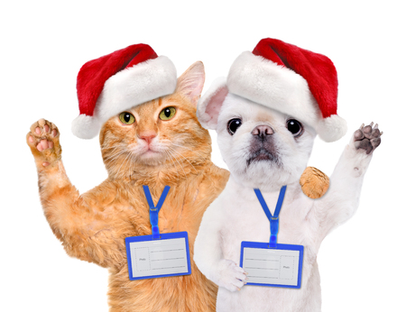 ides: Dog and cat in red Christmas hat wear blank white badge mockup. Isolated on the white.