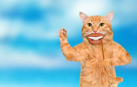 Cat holding card with funny smiley. Stock Photo