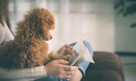 Jong meisje met een puppy zittend op een bank met behulp van een digitale tablet. Stockfoto