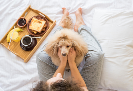 platanos fritos: Young woman with her dog in a bed. Breakfast in bed - french toasts with a cup of coffee. Foto de archivo